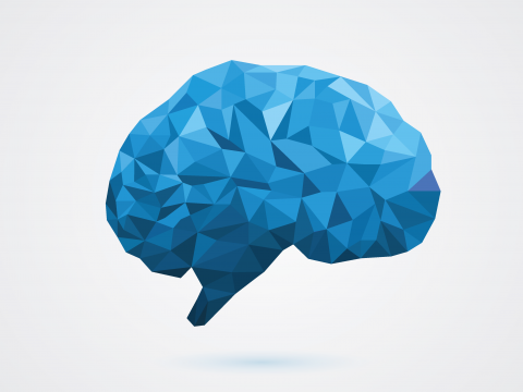 brain-1.png