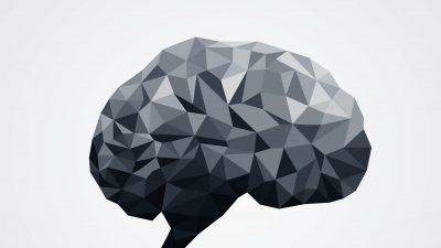 hjerne-graa.jpg