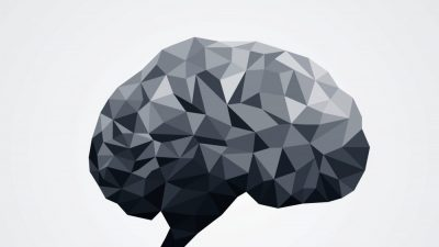 hjerne-graa-1000x600-c-default.jpg